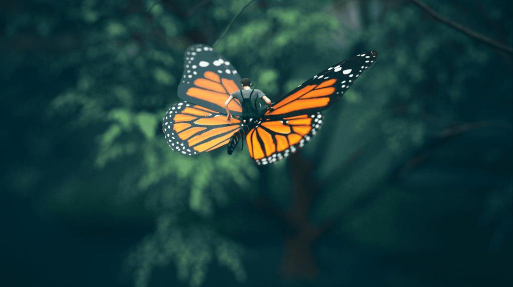 A voar numa borboleta